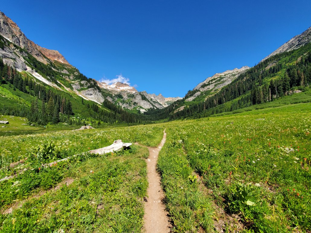 Spider Meadow Trail