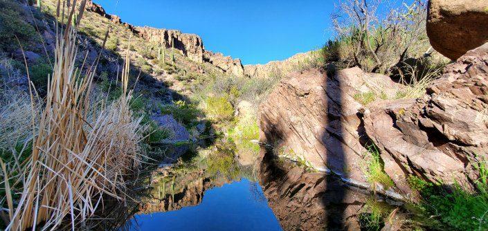 Superstition Wilderness Charlebois Hike 021