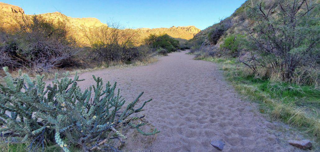 Superstition Wilderness Charlebois Hike 041