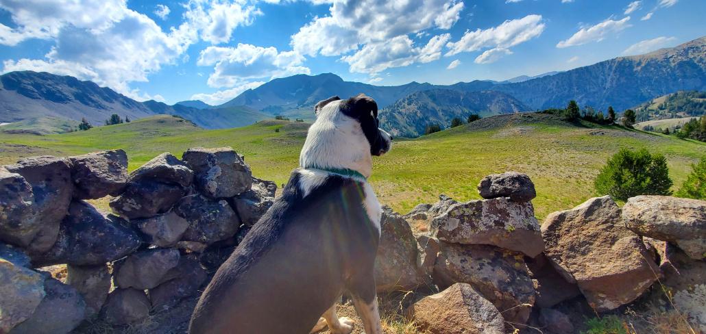 Enjoying the views.